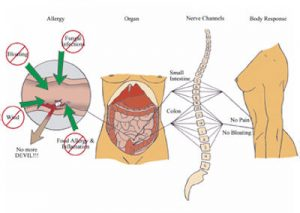 back pain, neck and shoulder pain